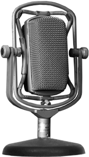 The Voice Box Mic02